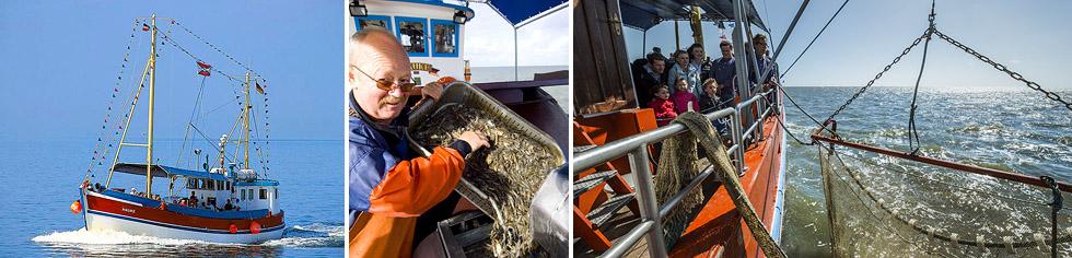 Fischkutterfahrt mit Krabbenpulen auf der Nordsee